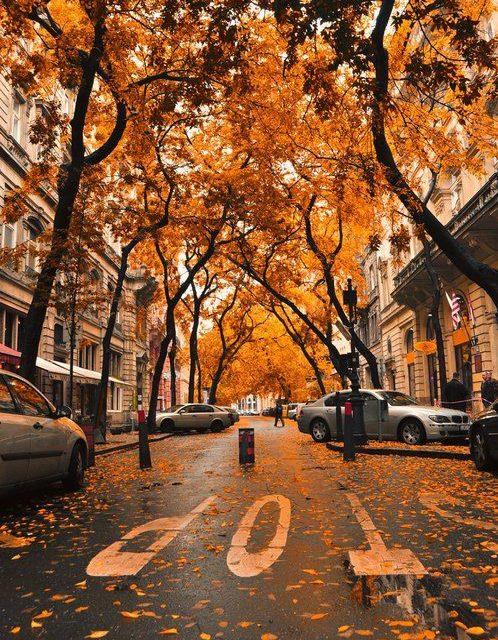 Flattering for fall